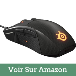 souris-gamer steelseries rival 700